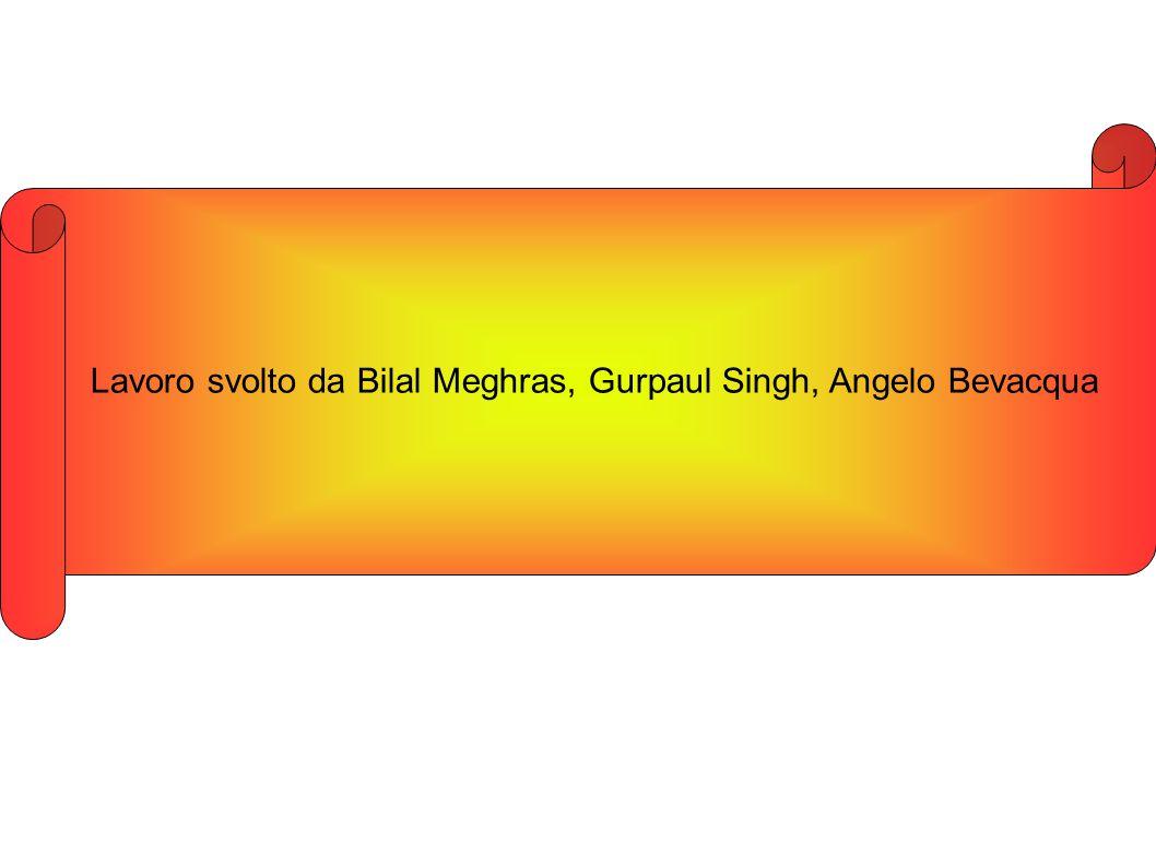 Lavoro svolto da Bilal Meghras, Gurpaul Singh, Angelo Bevacqua