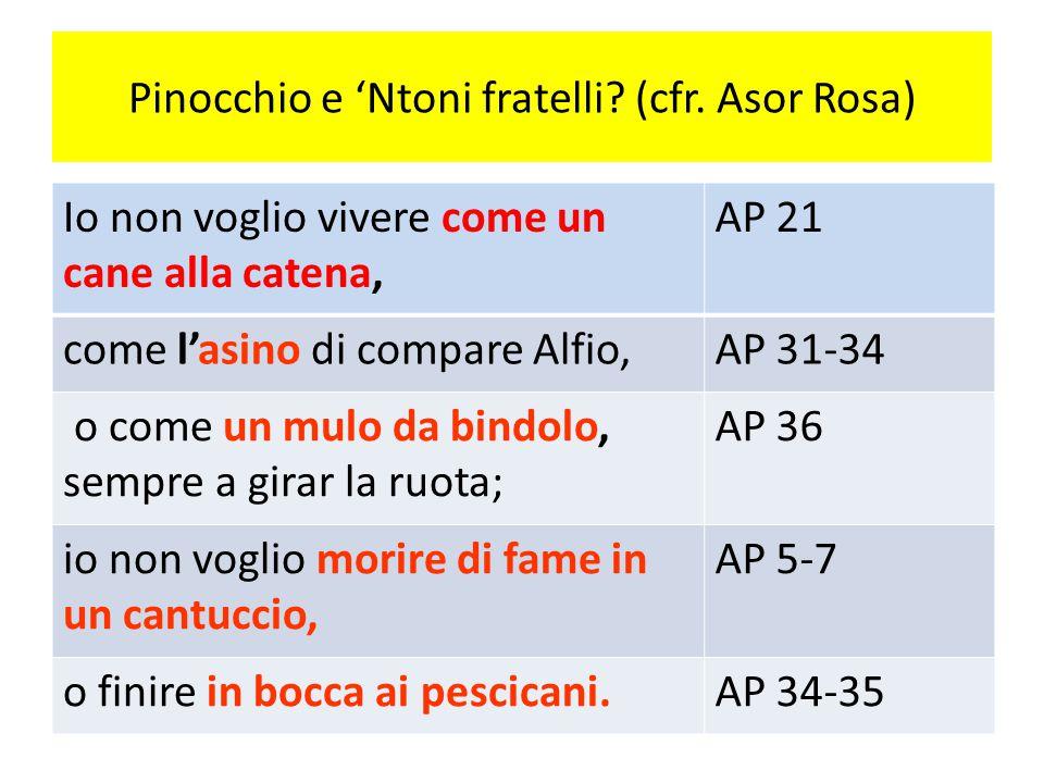 Pinocchio e 'Ntoni fratelli? (cfr. Asor Rosa) Io non voglio vivere come un cane alla catena, AP 21 come l'asino di compare Alfio,AP 31-34 o come un mu
