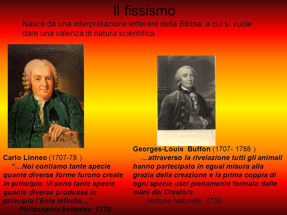 """Carlo Linneo (1707-78 ) """"…Noi contiamo tante specie quante diverse forme furono create in principio. Vi sono tante specie quante diverse produsse in p"""