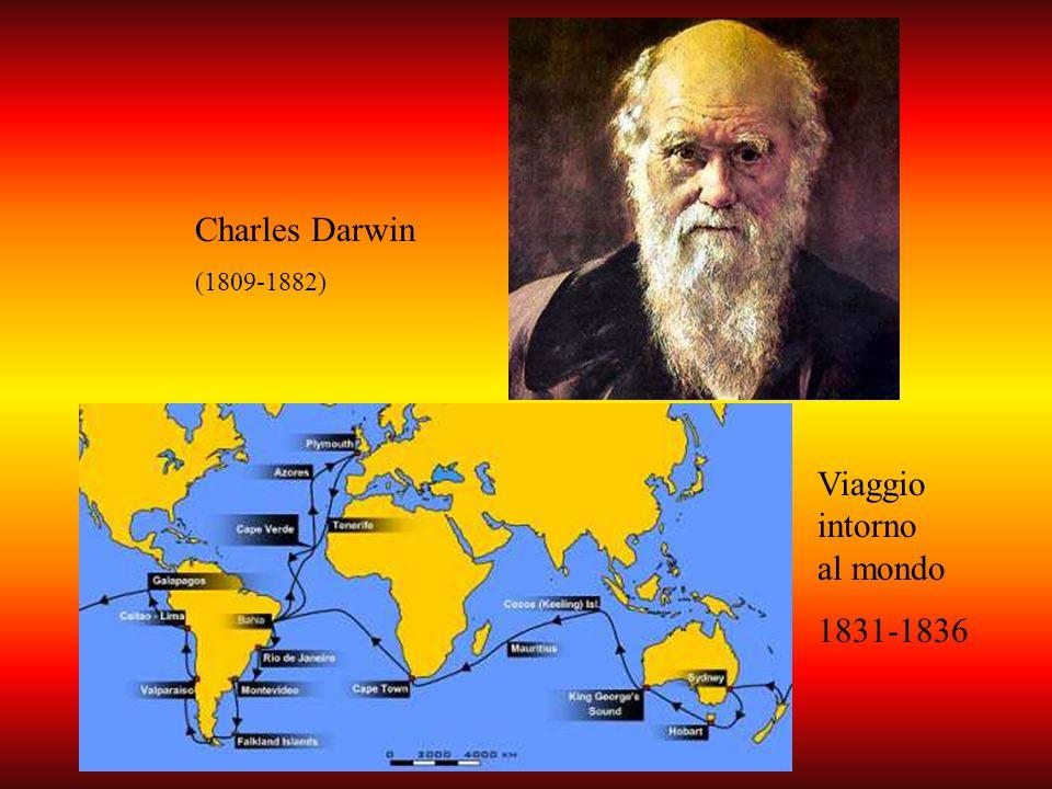 Charles Darwin (1809-1882) Viaggio intorno al mondo 1831-1836