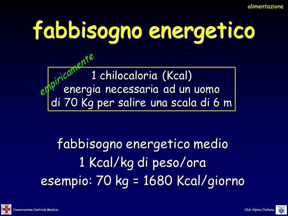 Commissione Centrale Medica Club Alpino Italiano stima del fabbisogno energetico sotto sforzo da 6 Kcal/kg di peso/ora senza zaino a 9 Kcal/kg di peso/ora con zaino da 20 kg UIAA recommendation nr.