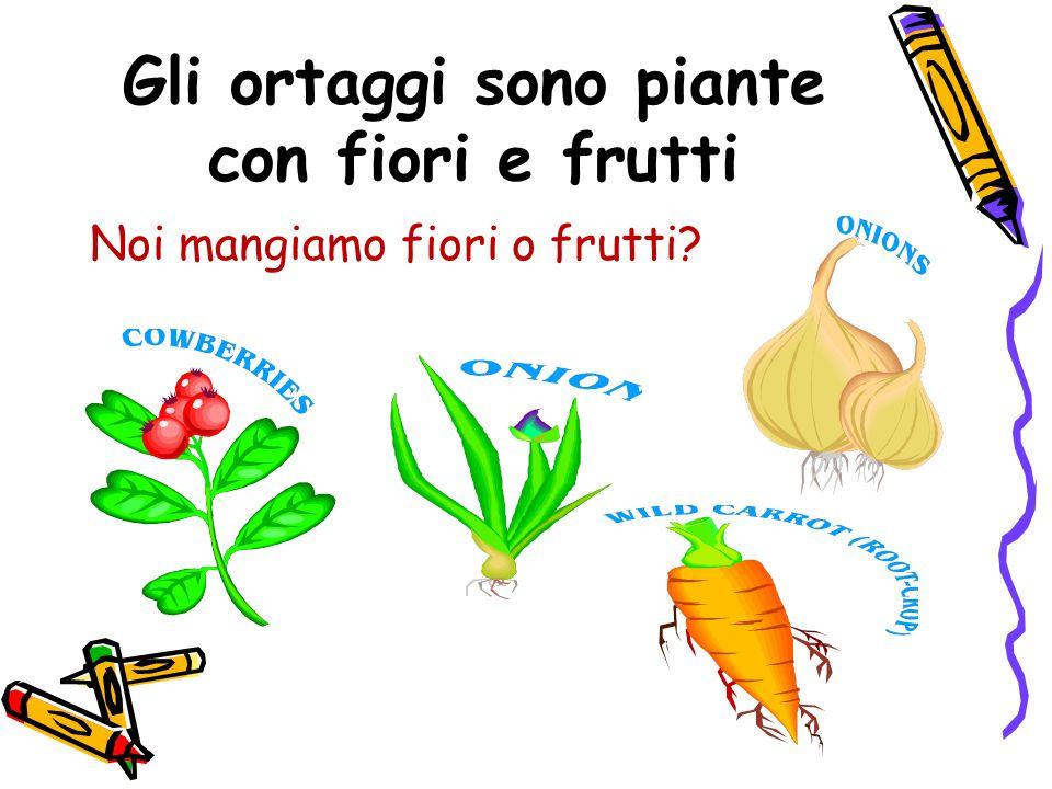 Gli ortaggi sono piante con fiori e frutti Noi mangiamo fiori o frutti?