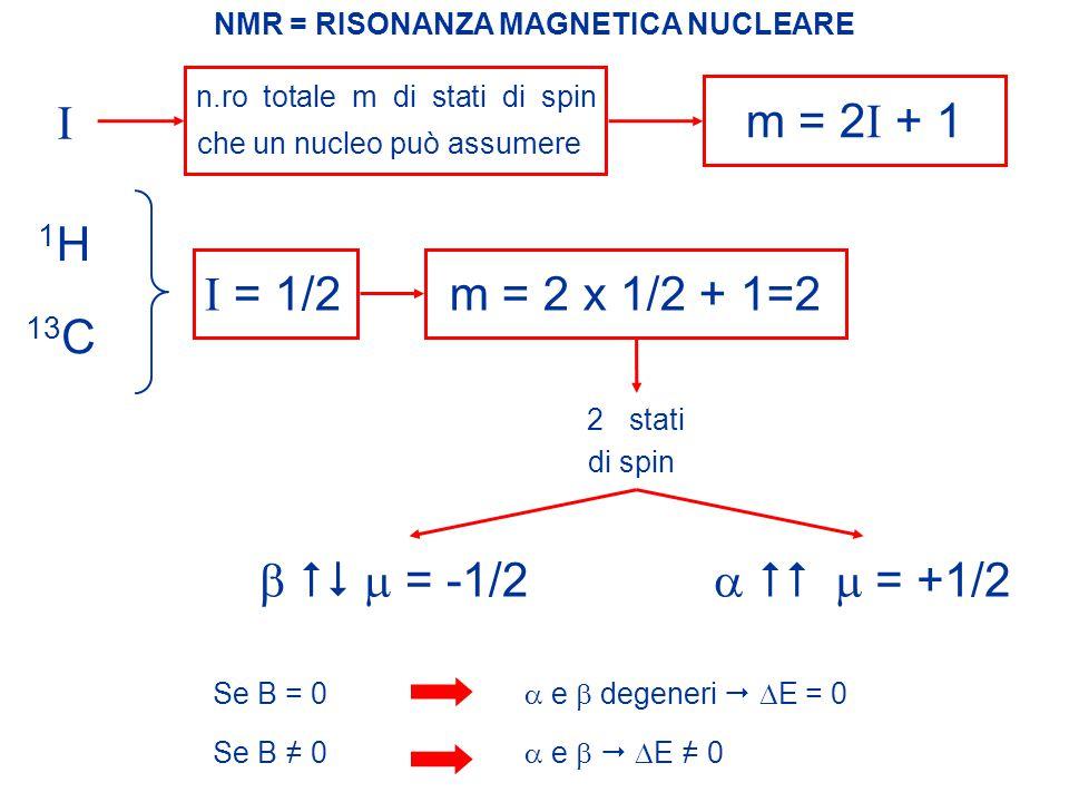  E = h  B 0 /2  dipende dal campo magnetico applicato dipende dal nucleo in esame NMR = RISONANZA MAGNETICA NUCLEARE Come si valuta la differenza di energia tra i due diversi stati di spin.