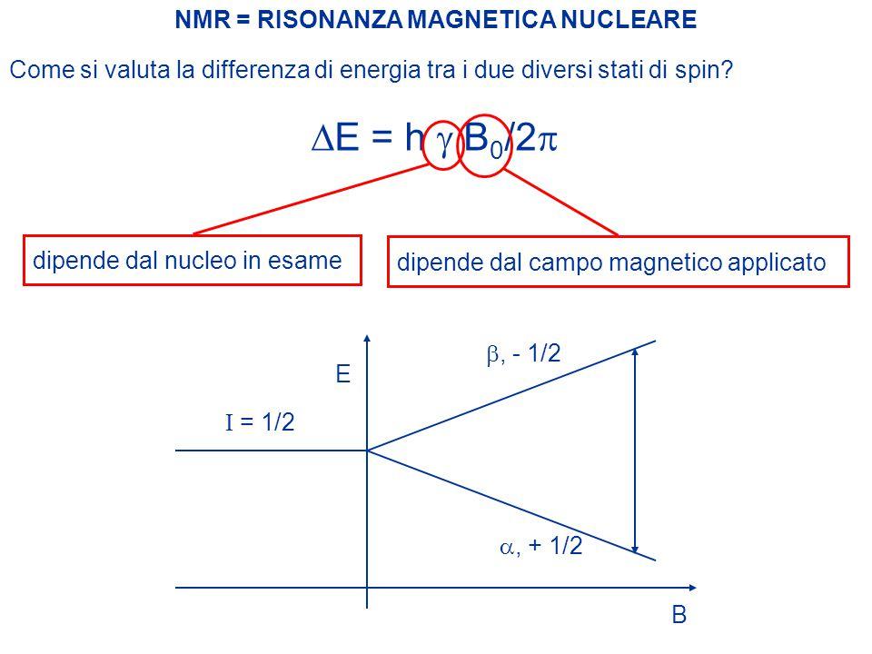 NMR = RISONANZA MAGNETICA NUCLEARE Il campo magnetico esterno B quindi determina l'esistenza di due livelli energetici per ciascun nucleo nella molecola con spin non nullo.