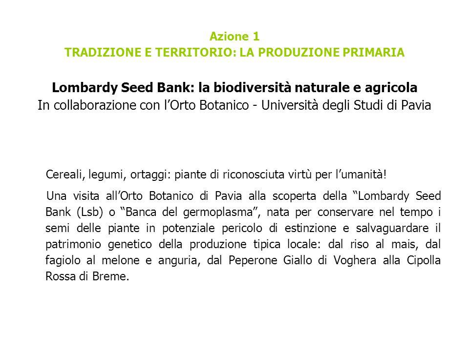 Azione 1 TRADIZIONE E TERRITORIO: LA PRODUZIONE PRIMARIA Lombardy Seed Bank: la biodiversità naturale e agricola In collaborazione con l'Orto Botanico