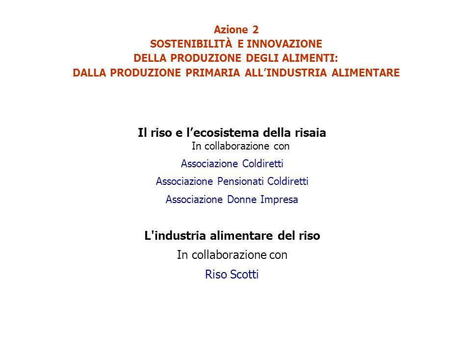 Azione 2 SOSTENIBILITÀ E INNOVAZIONE DELLA PRODUZIONE DEGLI ALIMENTI: DALLA PRODUZIONE PRIMARIA ALL'INDUSTRIA ALIMENTARE Il riso e l'ecosistema della risaia In collaborazione con Associazione Coldiretti Associazione Pensionati Coldiretti Associazione Donne Impresa L industria alimentare del riso In collaborazione con Riso Scotti
