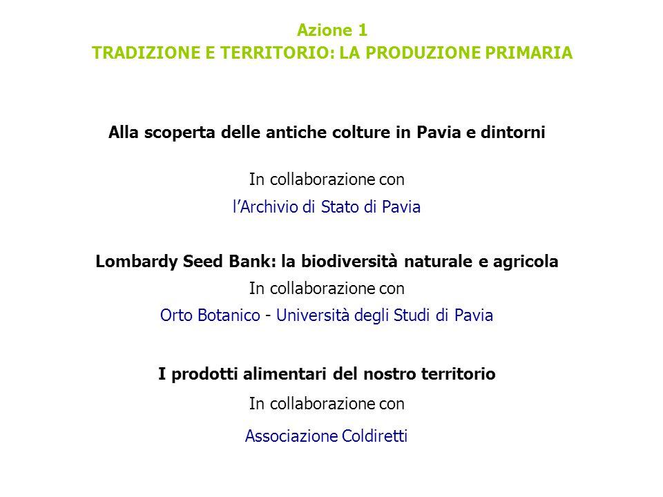 Azione 1 TRADIZIONE E TERRITORIO: LA PRODUZIONE PRIMARIA Alla scoperta delle antiche colture in Pavia e dintorni In collaborazione con l'Archivio di S