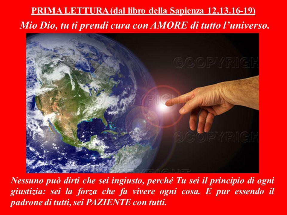 PRIMA LETTURA (dal libro della Sapienza 12,13.16-19) Mio Dio, tu ti prendi cura con AMORE di tutto l'universo.