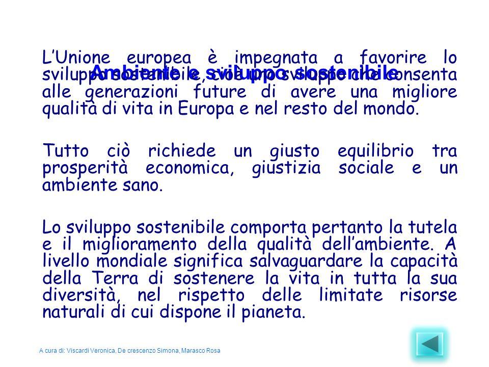 Ambiente e sviluppo sostenibile L'Unione europea è impegnata a favorire lo sviluppo sostenibile, cioè uno sviluppo che consenta alle generazioni futur