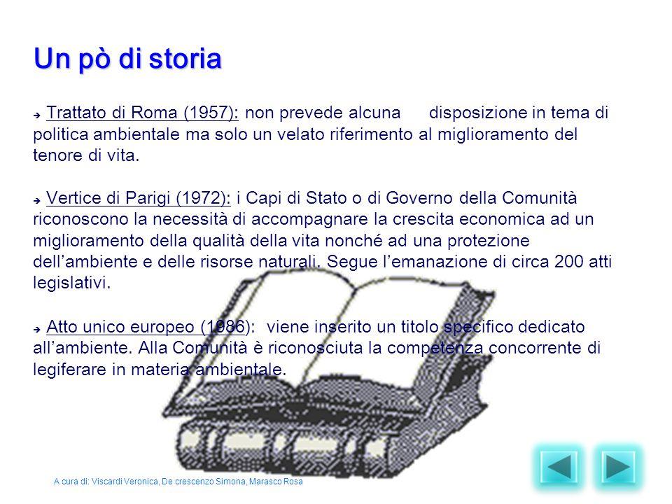  Trattato di Roma (1957): non prevede alcuna disposizione in tema di politica ambientale ma solo un velato riferimento al miglioramento del tenore di