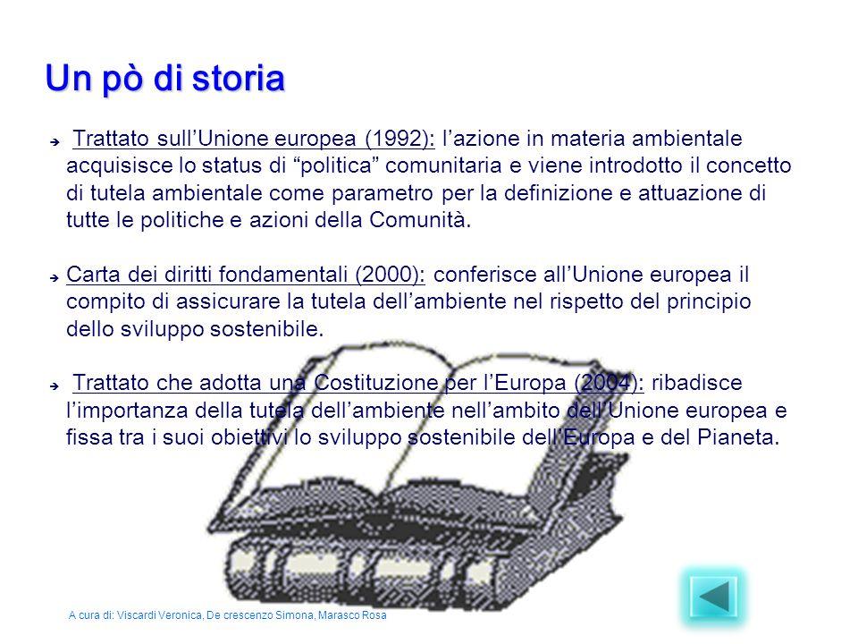 """ Trattato sull'Unione europea (1992): l'azione in materia ambientale acquisisce lo status di """"politica"""" comunitaria e viene introdotto il concetto di"""