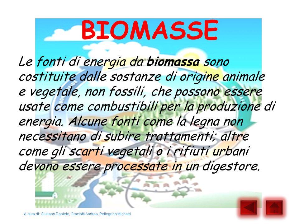 BIOMASSE Le fonti di energia da biomassa sono costituite dalle sostanze di origine animale e vegetale, non fossili, che possono essere usate come comb