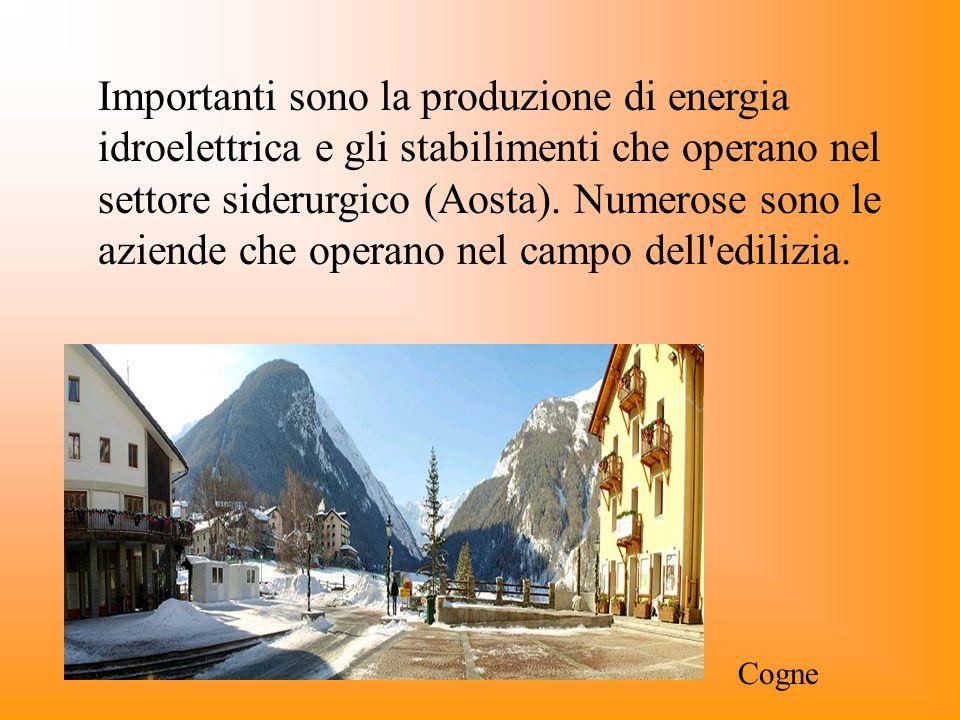 Importanti sono la produzione di energia idroelettrica e gli stabilimenti che operano nel settore siderurgico (Aosta). Numerose sono le aziende che op