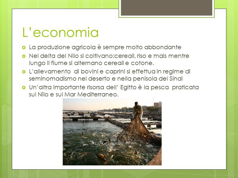 L'economia  La produzione agricola è sempre molto abbondante  Nel delta del Nilo si coltivano:cereali, riso e mais mentre lungo il fiume si alternan