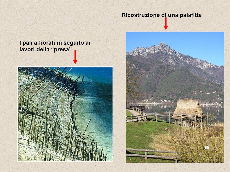 """Ricostruzione di una palafitta I pali affiorati in seguito ai lavori della """"presa"""""""