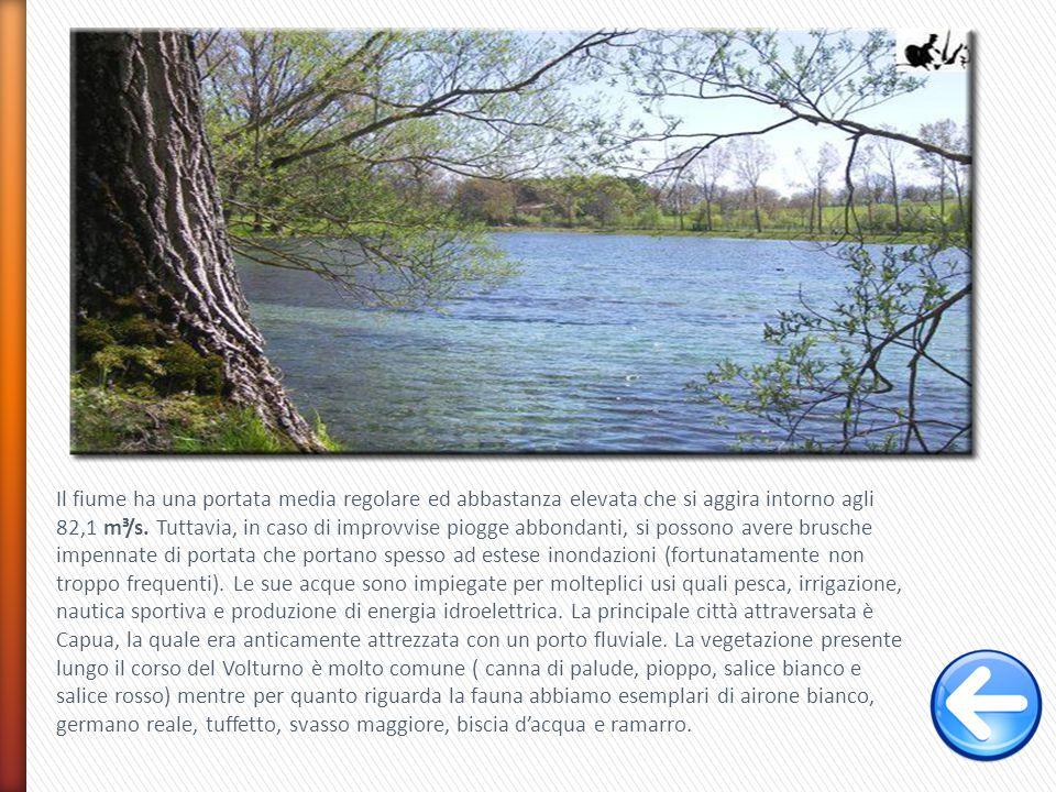 Il fiume ha una portata media regolare ed abbastanza elevata che si aggira intorno agli 82,1 m³/s.