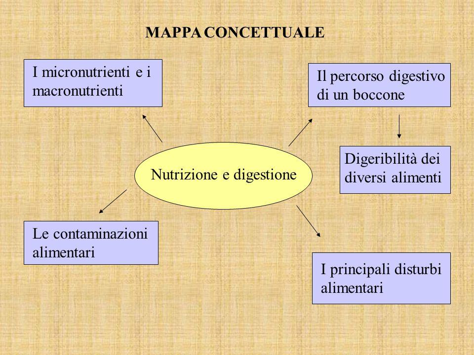 MAPPA CONCETTUALE I micronutrienti e i macronutrienti I principali disturbi alimentari Digeribilità dei diversi alimenti Il percorso digestivo di un boccone Le contaminazioni alimentari Nutrizione e digestione