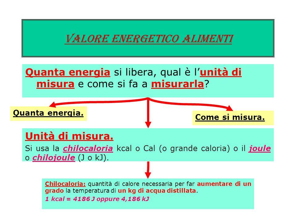 19 Quanta energia si libera, qual è l'unità di misura e come si fa a misurarla? Valore energetico ALIMENTI Quanta energia. In laboratorio si è trovato