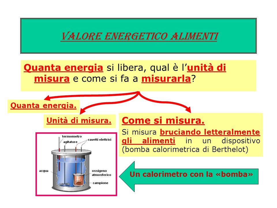 Quanta energia si libera, qual è l'unità di misura e come si fa a misurarla? Valore energetico ALIMENTI Quanta energia. Unità di misura. Si usa la chi