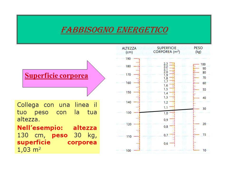 Fabbisogno energetico METABOLISMO BASALE Si calcola moltiplicando un numero, per la superficie corporea e per il numero di ore in un giorno. Il «numer