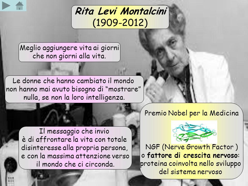 Rita Levi Montalcini (1909-2012) Premio Nobel per la Medicina NGF (Nerve Growth Factor ) o fattore di crescita nervoso: proteina coinvolta nello svilu