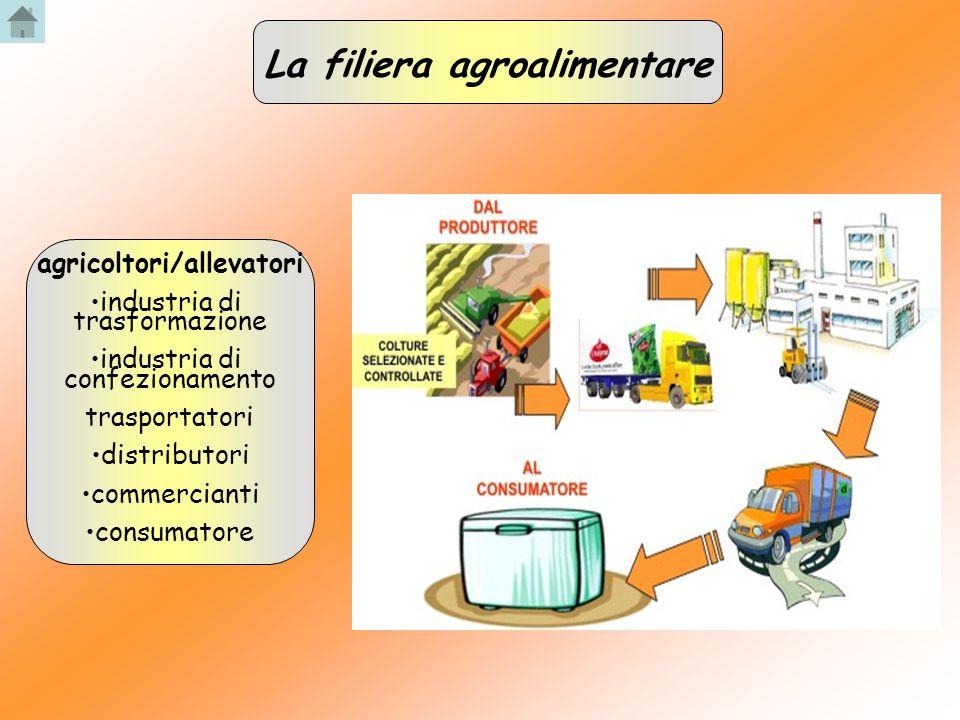 agricoltori/allevatori industria di trasformazione industria di confezionamento trasportatori distributori commercianti consumatore La filiera agroali