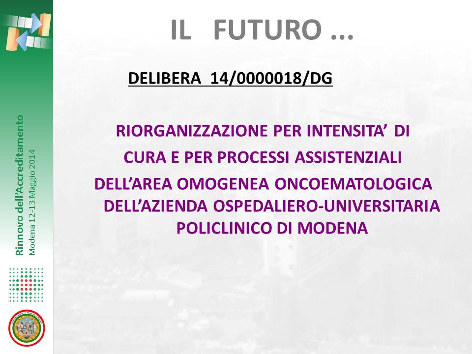 Rinnovo dell'Accreditamento Modena 12-13 Maggio 2014 IL FUTURO... DELIBERA 14/0000018/DG RIORGANIZZAZIONE PER INTENSITA' DI CURA E PER PROCESSI ASSIST