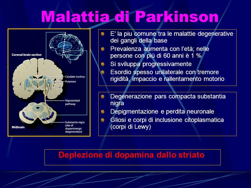 Malattia di Parkinson E' la piu comune tra le malattie degenerative dei gangli della base Prevalenza aumenta con l'età; nelle persone con più di 60 an
