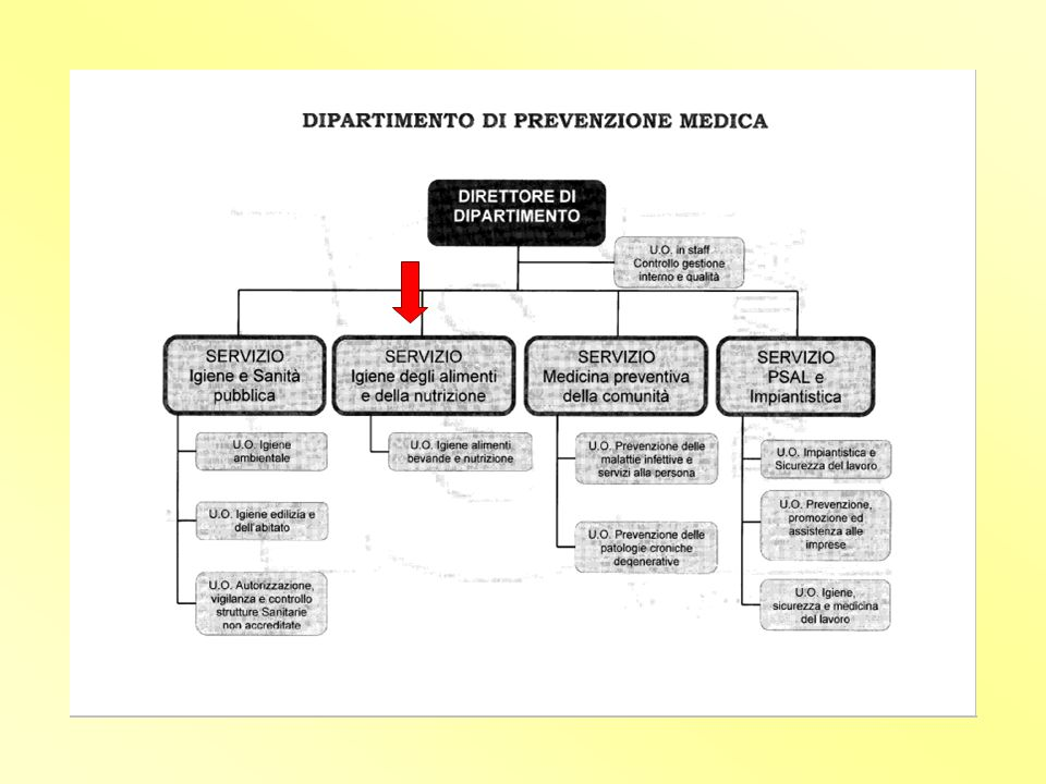 CONTROLLO UFFICIALE - AUDIT PROGRAMMAZIONE di solito riguarda tutti gli aspetti del processo produttivo può riguardare anche singoli aspetti o processi
