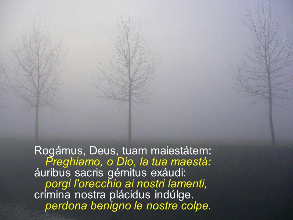 Déxtera Patris, lapis anguláris, Destra del Padre, pietra angolare Via salútis, iánua cæléstis, via di salvezza, porta del cielo, áblue nostri máculas