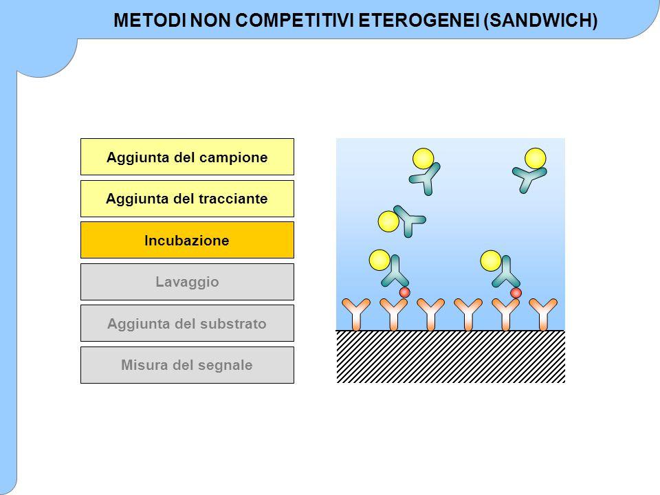 Aggiunta del campione Aggiunta del tracciante Incubazione Lavaggio Aggiunta del substrato Misura del segnale METODI NON COMPETITIVI ETEROGENEI (SANDWI