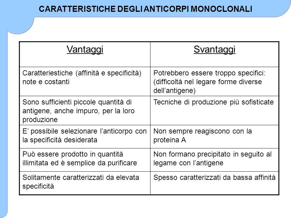 CARATTERISTICHE DEGLI ANTICORPI MONOCLONALI VantaggiSvantaggi Caratteriestiche (affinità e specificità) note e costanti Potrebbero essere troppo speci
