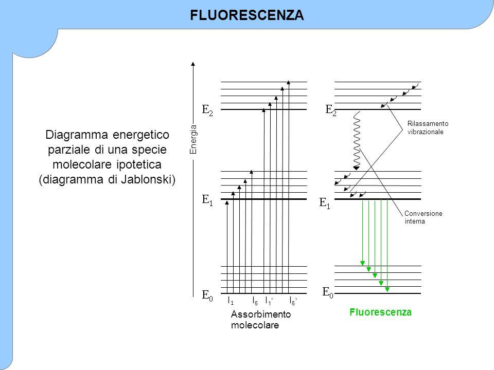       Assorbimento molecolare l 1 l 5 Energia l 1 ' l 5 '   Conversione interna Rilassamento vibrazionale   Fluorescenza   Diagramma energ