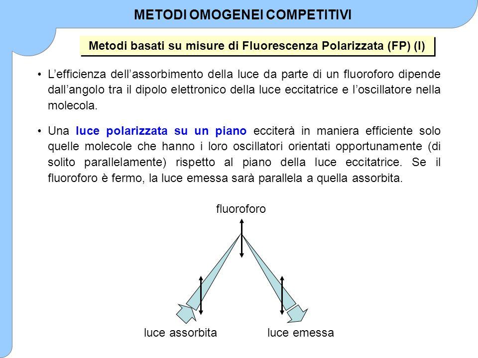 L'efficienza dell'assorbimento della luce da parte di un fluoroforo dipende dall'angolo tra il dipolo elettronico della luce eccitatrice e l'oscillato