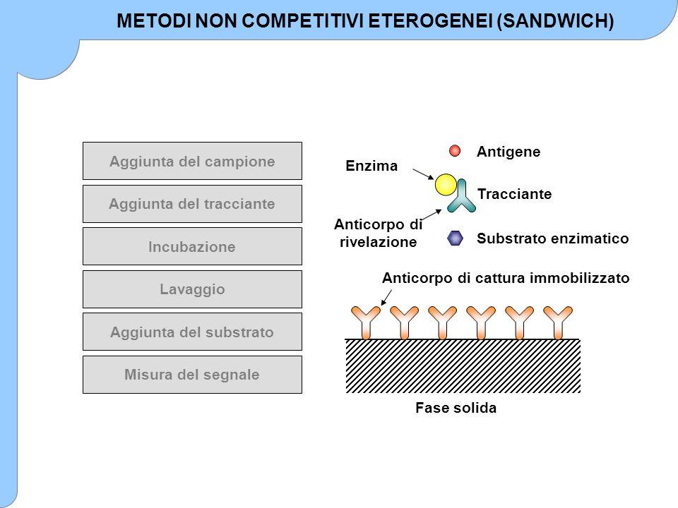 Aggiunta del campione Aggiunta del tracciante Incubazione Lavaggio Aggiunta del substrato Misura del segnale Fase solida Anticorpo di cattura immobili