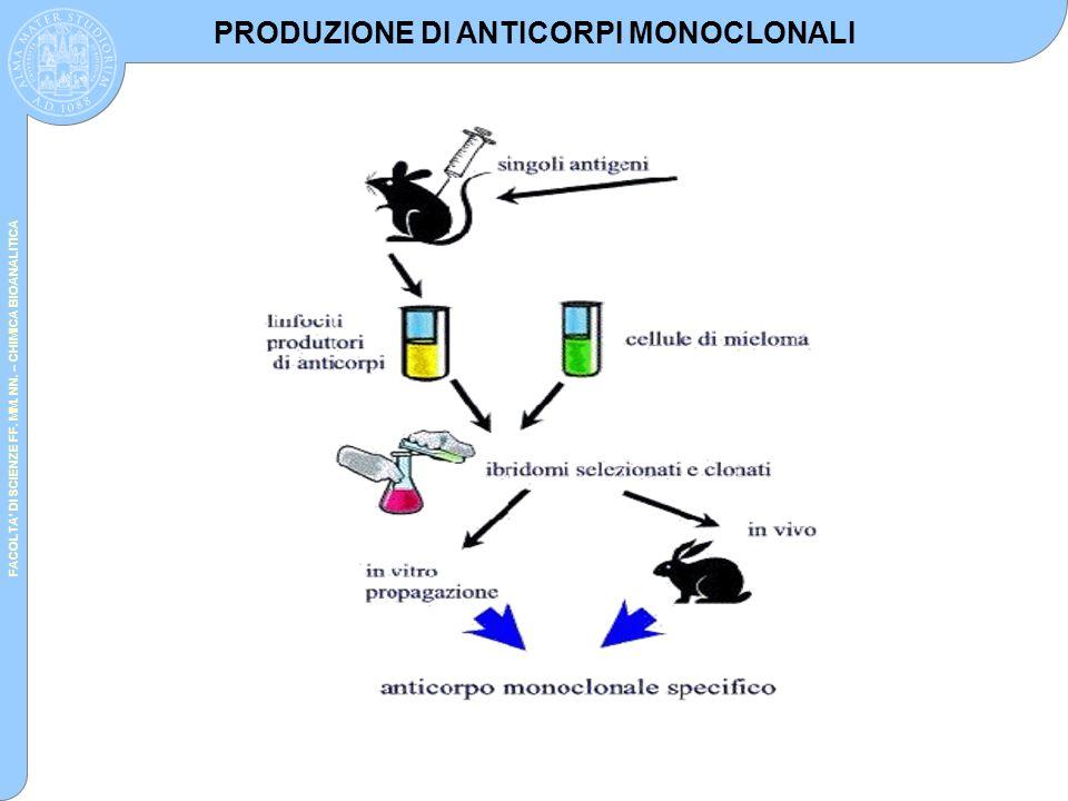 FACOLTA' DI SCIENZE FF. MM. NN. – CHIMICA BIOANALITICA PRODUZIONE DI ANTICORPI MONOCLONALI