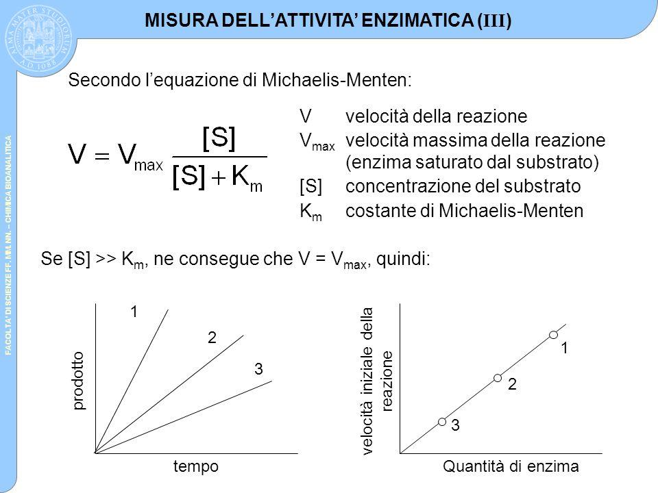 FACOLTA' DI SCIENZE FF. MM. NN. – CHIMICA BIOANALITICA Secondo l'equazione di Michaelis-Menten: Vvelocità della reazione V max velocità massima della