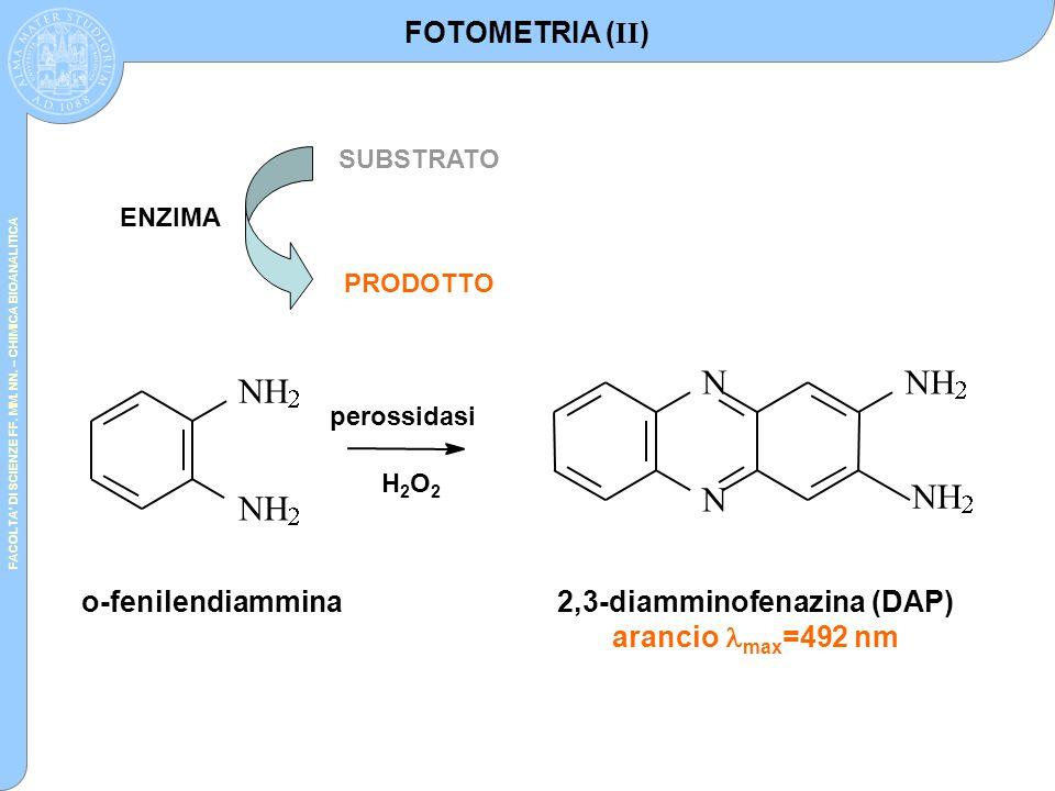 FACOLTA' DI SCIENZE FF. MM. NN. – CHIMICA BIOANALITICA ENZIMA SUBSTRATO PRODOTTO          o-fenilendiammina2,3-diamminofenazina (DAP) ar