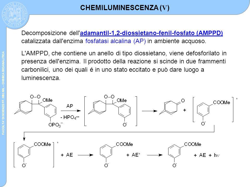 FACOLTA' DI SCIENZE FF. MM. NN. – CHIMICA BIOANALITICA Decomposizione dell'adamantil-1,2-diossietano-fenil-fosfato (AMPPD) catalizzata dall'enzima fos