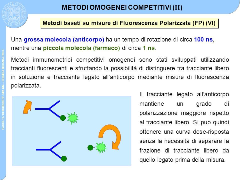 FACOLTA' DI SCIENZE FF. MM. NN. – CHIMICA BIOANALITICA Una grossa molecola (anticorpo) ha un tempo di rotazione di circa 100 ns, mentre una piccola mo