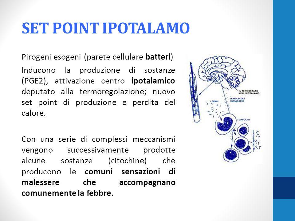 SET POINT IPOTALAMO Pirogeni esogeni (parete cellulare batteri) Inducono la produzione di sostanze (PGE2), attivazione centro ipotalamico deputato alla termoregolazione; nuovo set point di produzione e perdita del calore.