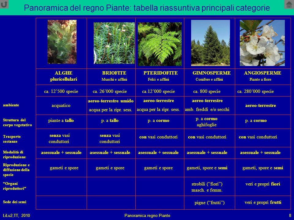LiLu2,TT, 2010Panoramica regno Piante8 Panoramica del regno Piante: tabella riassuntiva principali categorie ALGHE pluricellulari BRIOFITE PTERIDOFITE GIMNOSPERMEANGIOSPERME Muschi e affiniFelci e affiniConifere e affiniPiante a fiore piante a tallop.