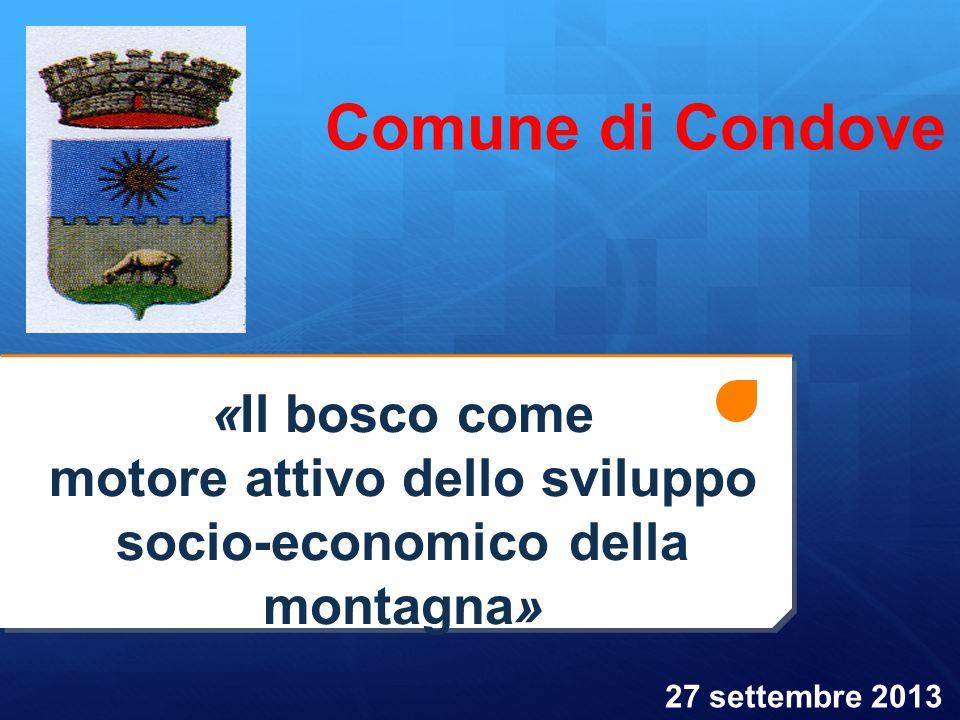 «Il bosco come motore attivo dello sviluppo socio-economico della montagna» Comune di Condove 27 settembre 2013