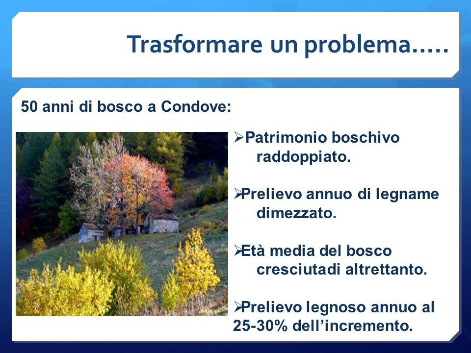 Trasformare un problema….. 50 anni di bosco a Condove:  Patrimonio boschivo raddoppiato.  Prelievo annuo di legname dimezzato.  Età media del bosco