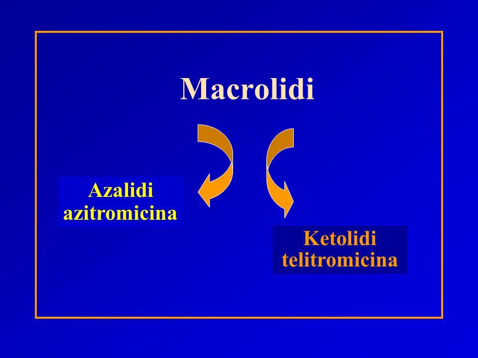 Macrolidi Azalidi azitromicina Ketolidi telitromicina