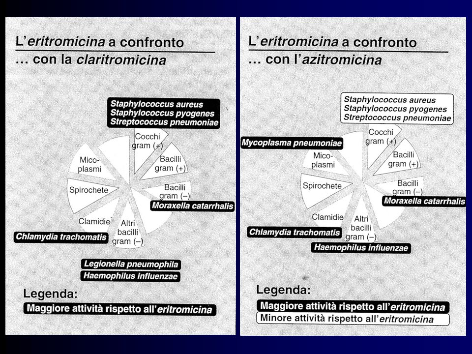Indicazioni cliniche dei Macrolidi Infezioni delle alte vie respiratorie (faringite streptococcica, otite media da pneumococco e micoplasma) Infezioni delle basse vie respiratorie (da pneumococco, legionella, micoplasma, clamidia, emofilo) Infezioni cutanee da streptococchi e stafilococchi, acne Infezioni odontoiatriche Diarrea da Campylobacter Infezioni trasmesse Toxoplasmosi per via sessuale
