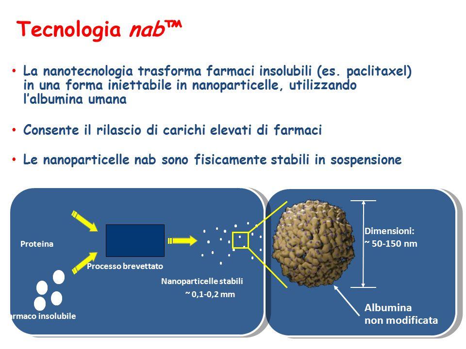 Il mondo in nanoscala Capello umano = 100.000 nm Albumina = 5 nm Emoglobina = 6,5 nm Proteine Globuli rossi GR = 8000 nm Nanodispositivi : Nanopori Dendrimeri Nanotubi Punti quantici Nanogusci Nanoparticelle Tecnologia nab™ ~130 nm AcquaGlucosioAnticorpoVirusBatteriCellula tumoraleUn puntoPallina da tennis Nanometri