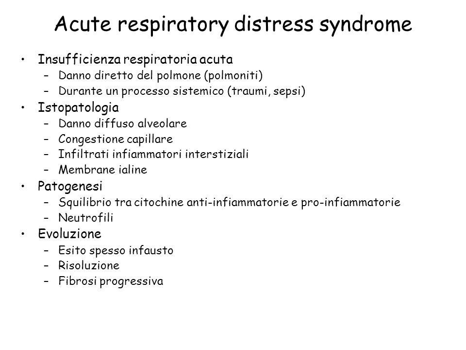 Acute respiratory distress syndrome Insufficienza respiratoria acuta –Danno diretto del polmone (polmoniti) –Durante un processo sistemico (traumi, se