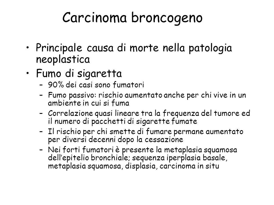 Carcinoma broncogeno Principale causa di morte nella patologia neoplastica Fumo di sigaretta –90% dei casi sono fumatori –Fumo passivo: rischio aument