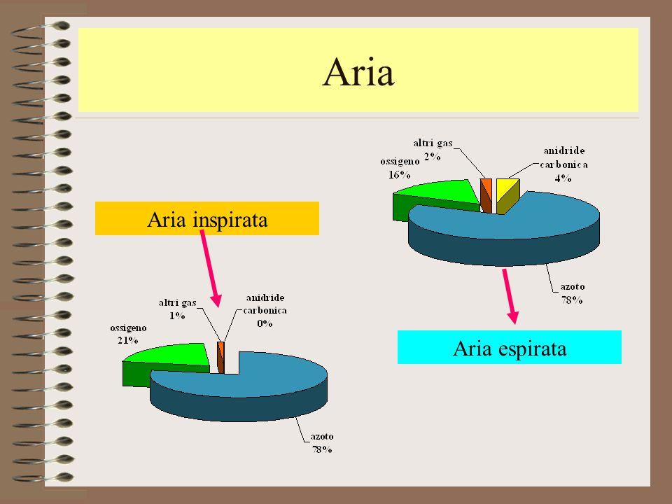 Aria Aria inspirata Aria espirata